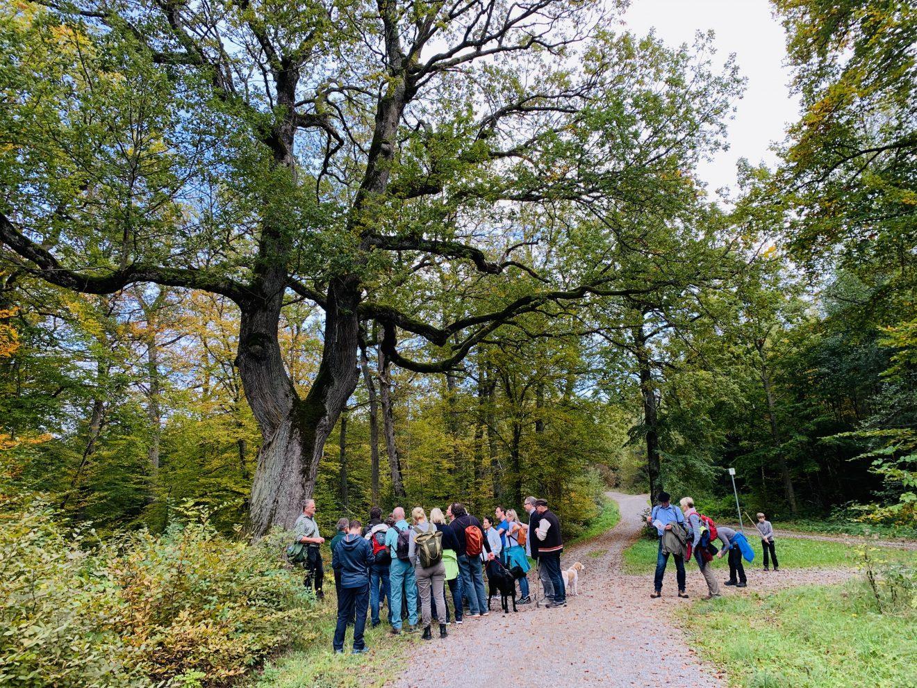 95.600 Euro für den Naturpark Schönbuch